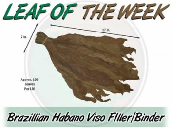 Leaf Of The Week: Brazilian Habano Viso Filler / Binder