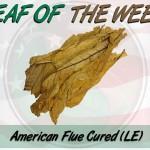 Leaf Of The Week: American Virginia Flue Cured L.E.