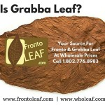 What Is Grabba Leaf?  Grabba Leaf Is A Way Of Smoking Fronto Leaf